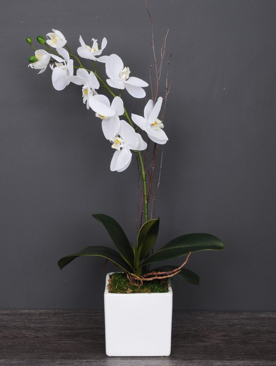 orchidee_artificiel